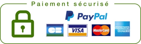 payment-getway-icon